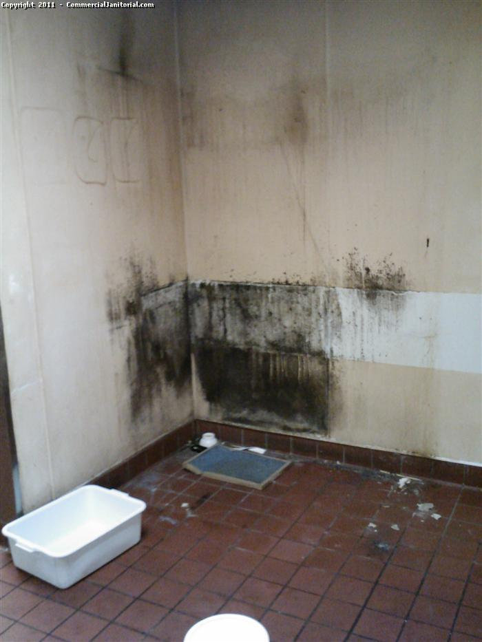 Black Mold Removal Before After This Commercial Kitchen