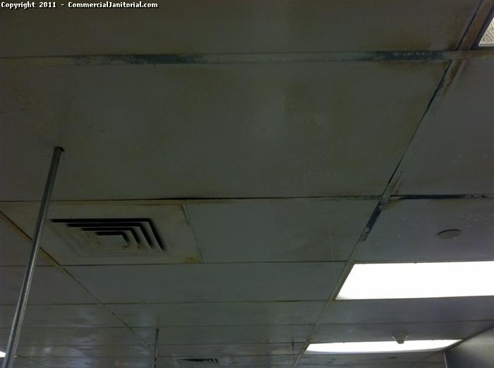 In this picture we have a kitchen that we were cleaning and the ceiling tiles are yellow becuse of all the grease build up it had. in order for us to clean it we first we spray degreser in all the ceiling tiles with a pressure washer thats capable to do that with not so much pressure so that we dont mess up the tiles. after we let that degreaser do its work for a few minutes then we rinsed the tiles with the pressure washer.