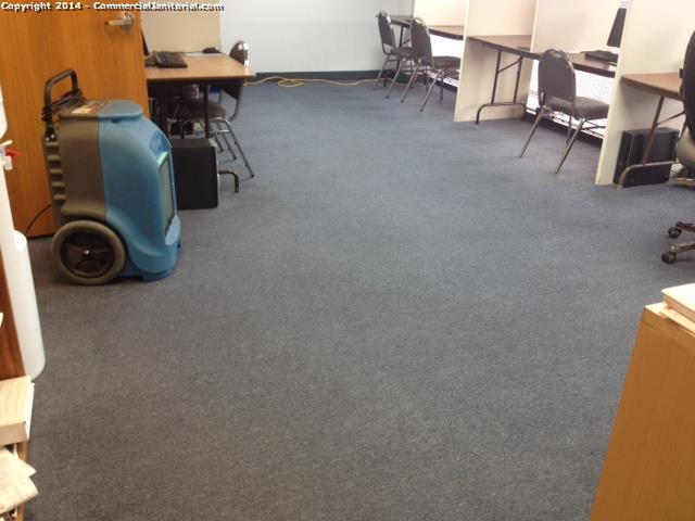 Carpet had an extraction done, everything came out great ; workers resolve the problem client was having .