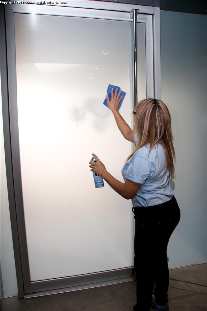 Window and glass cleaning processes require training in order to take advantage of green cleaning techniques. So your glass looks clean with out harsh chemicals.